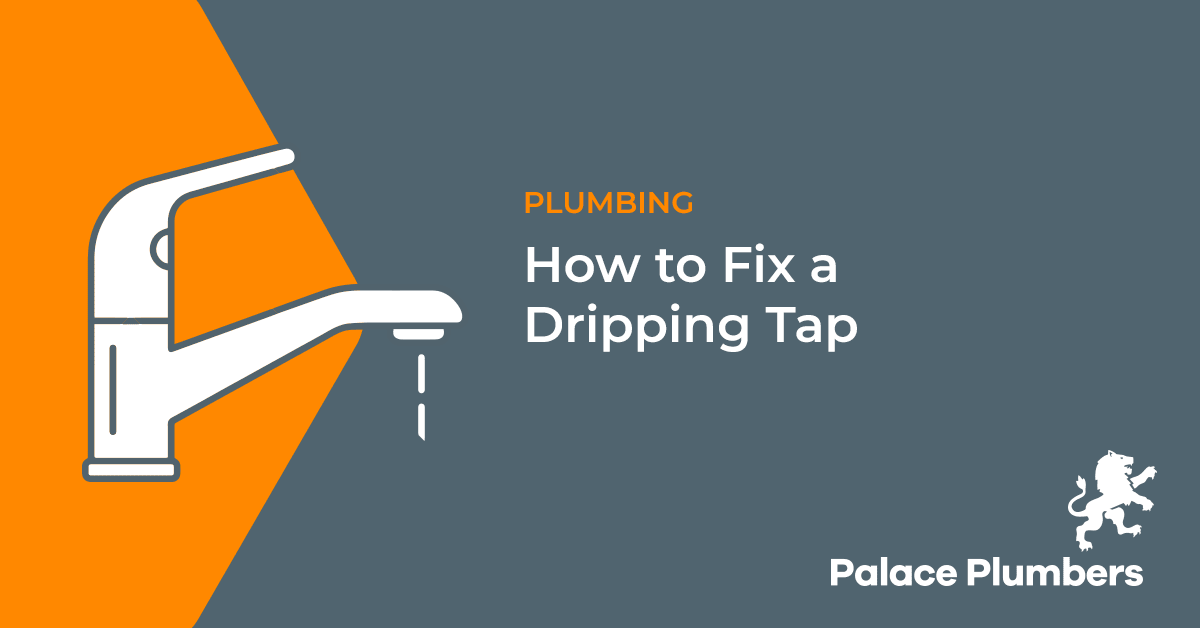 Hoe to Fix a Dripping Tap